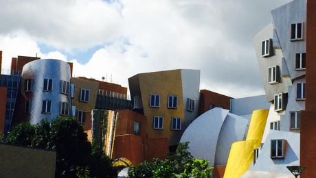 Stata Center